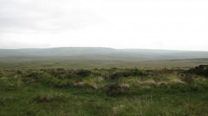 Empty landscape - 300dpi