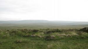 Empty landscape - 72dpi